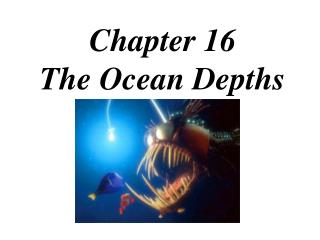 Chapter 16 The Ocean Depths
