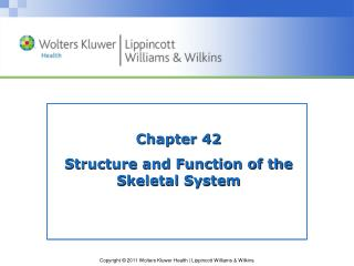 Chapter 42 Structure and Function of the Skeletal System
