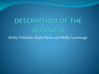 DESCRIPTION OF THE BUSINESS