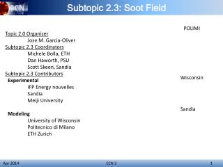 Subtopic 2.3: Soot Field