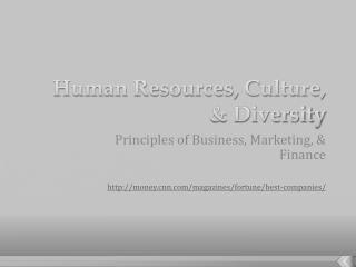 Human Resources, Culture, & Diversity