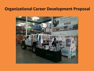 Organizational Career Development Proposal