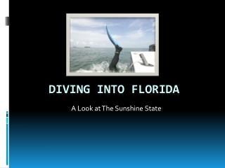Diving into Florida