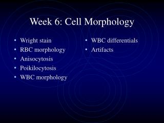 Week 6: Cell Morphology
