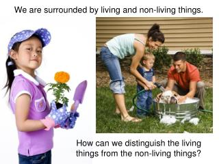 We are surrounded by living and non-living things.
