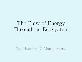 The Flow of Energy Through an Ecosystem