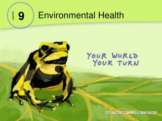 Assessment of Risks to Human Health from Waste Landfill Sites: Epidemiological Evidence