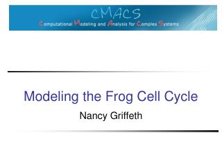 Modeling the Frog Cell Cycle