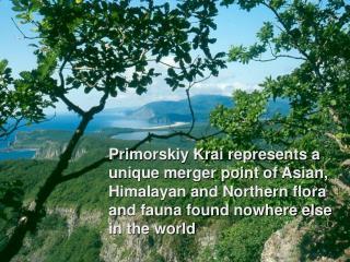 Primorye, Russian Far East
