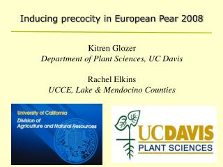 Inducing precocity in European Pear 2008