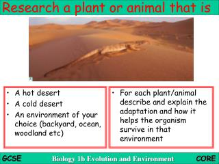 Research a plant or animal that is