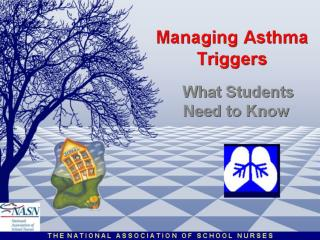 Managing Asthma Triggers