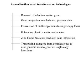 Recombination based transformation technologies