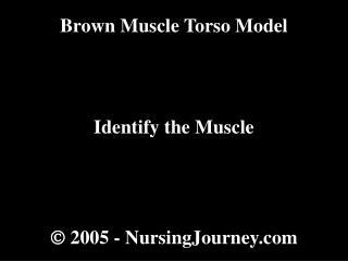  2005 -  NursingJourney