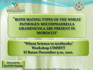 """ BOTH MATING TYPES OF THE WHEAT PATHOGEN MYCOSPHAERELLA GRAMINICOLA ARE PRESENT IN MOROCCO """