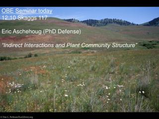 OBE Seminar today 12:10 Skaggs 117 Eric Aschehoug (PhD Defense)