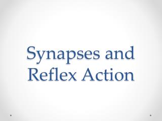 Synapses and Reflex Action