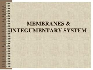 MEMBRANES & INTEGUMENTARY SYSTEM