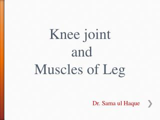 Knee joint  and  Muscles of Leg