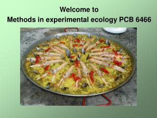 Welcome to  Methods in experimental ecology PCB 6466