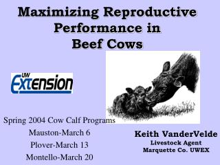 Maximizing Reproductive Performance in Beef Cows