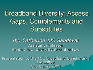 Broadband Diversity; Access Gaps, Complements and Substitutes