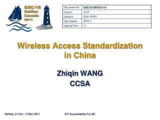 Wireless Access Standardization in China