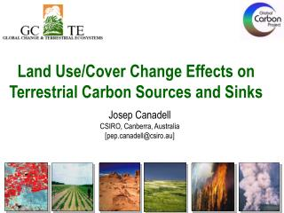 Land Use/Cover Change Effects on  Terrestrial Carbon Sources and Sinks