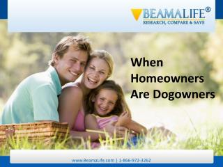 When Homeowners Are Dogowners