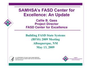 Building FASD State Systems (BFSS) 2009 Meeting Albuquerque, NM May 13, 2009