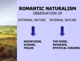ROMANTIC NATURALISM OBSERVATION OF