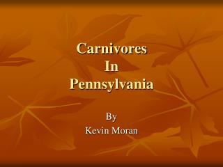 Carnivores In Pennsylvania