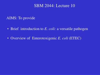 SBM 2044: Lecture 10