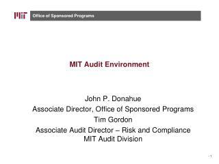 MIT Audit Environment