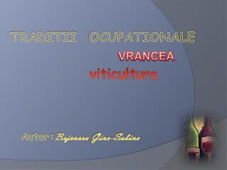 TRADITII   OCUPATIONALE