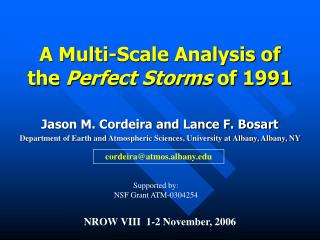 A Multi-Scale Analysis of the  Perfect Storms  of 1991