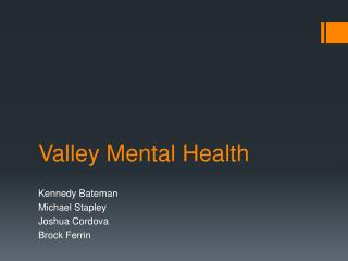 Valley Mental Health