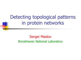 Detecting topological patterns in protein networks