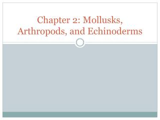 Chapter 2: Mollusks, Arthropods, and Echinoderms