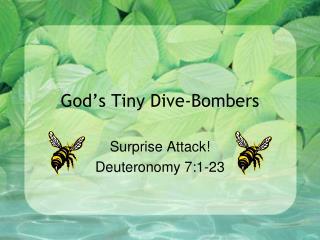 God's Tiny Dive-Bombers