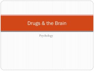 Drugs & the Brain
