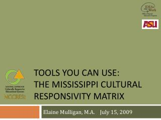 Tools you can use:  The Mississippi cultural  responsivity  matrix