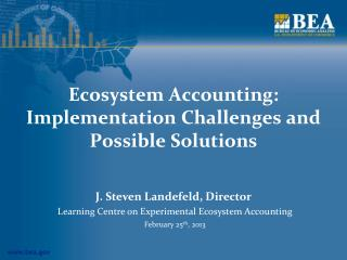 Ecosystem Accounting: Implementation Challenges and Possible Solutions