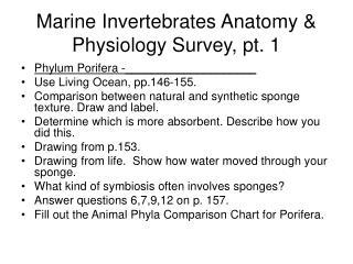 Marine Invertebrates Anatomy & Physiology Survey, pt. 1