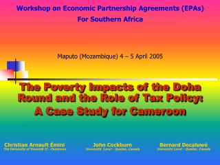 The Poverty Impacts of the Doha Round and the Role of Tax Policy: A Case Study for Cameroon