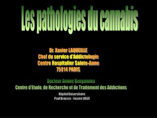 Les pathologies du cannabis
