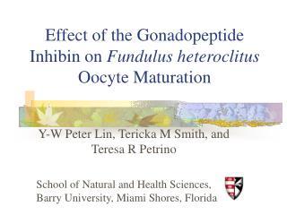 Effect of the Gonadopeptide Inhibin on Fundulus heteroclitus Oocyte Maturation