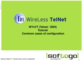 WTnVT (Telnet / SSH) Tutorial  Common cases of configuration