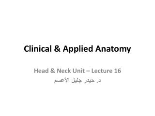 Clinical & Applied Anatomy