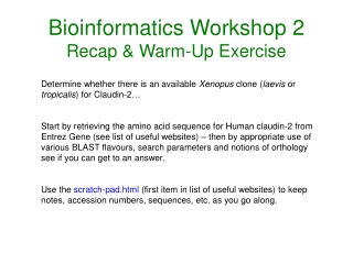 Bioinformatics Workshop 2 Recap & Warm-Up Exercise